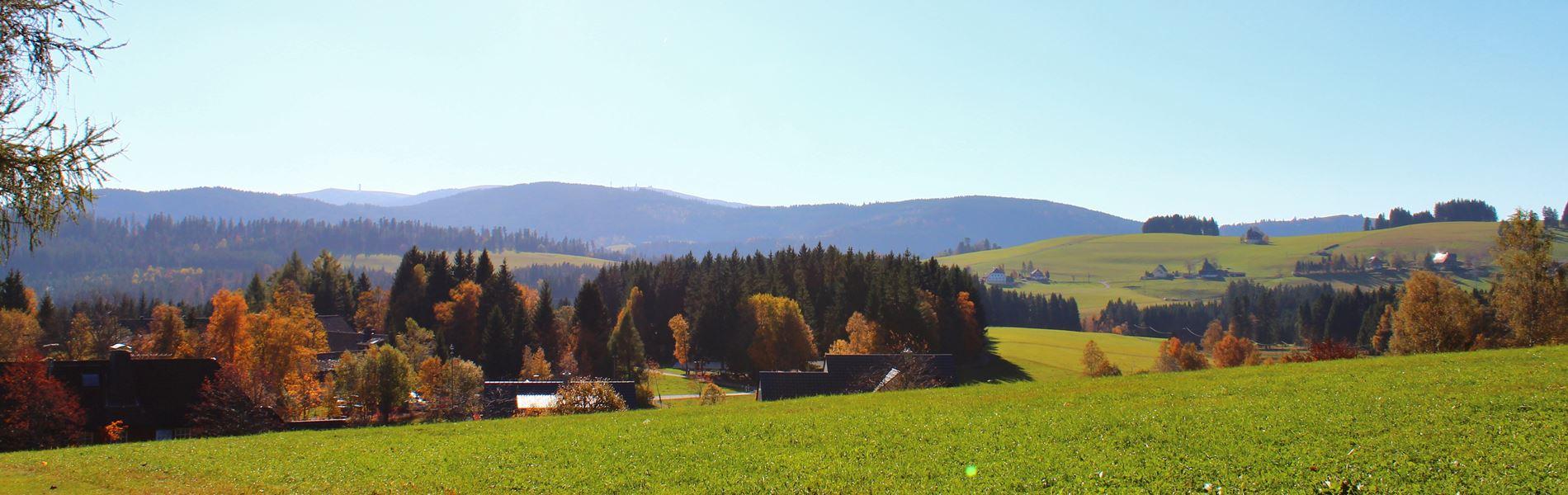 Breitnau im Schwarzwald Blick auf den Feldberg