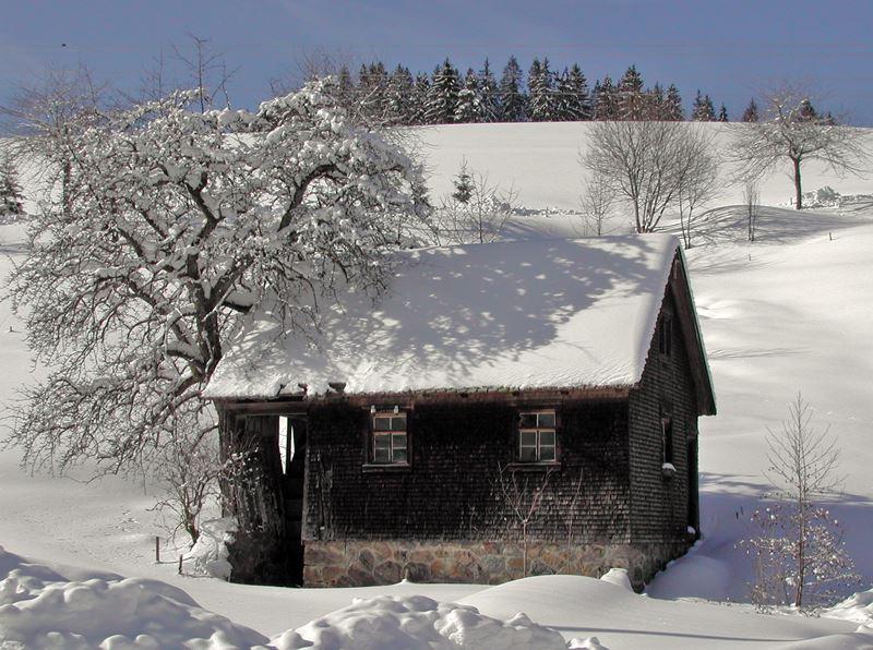 Hofmühle Lippenhof Schwarzwald