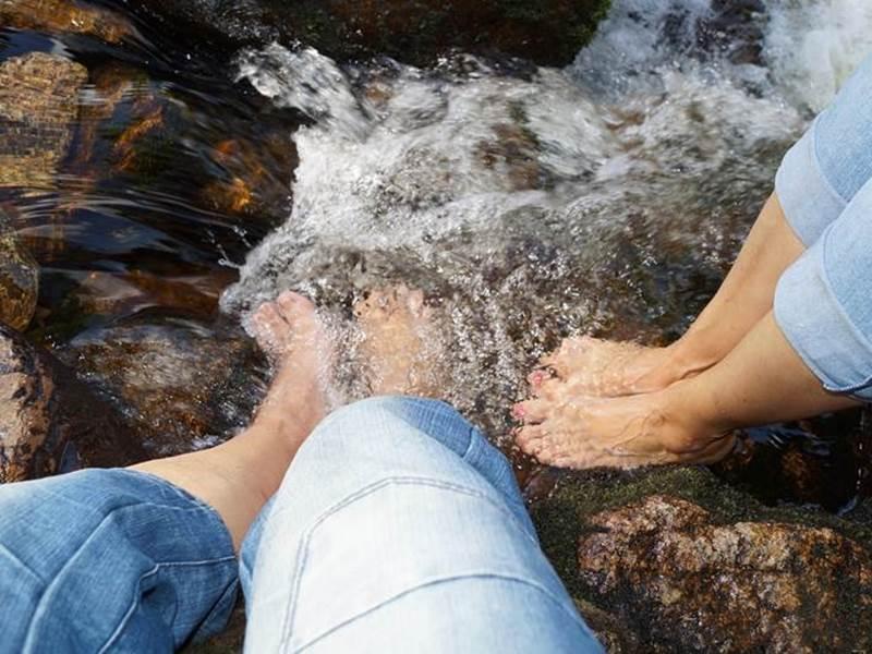Schwarzwald Bach Abkühlung Wandern