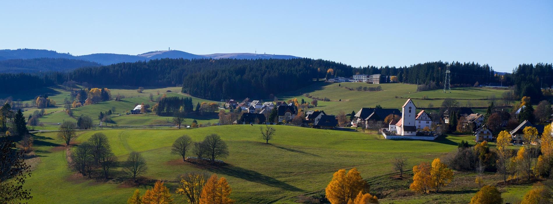 Blick zum Feldberg Hochschwarzwald