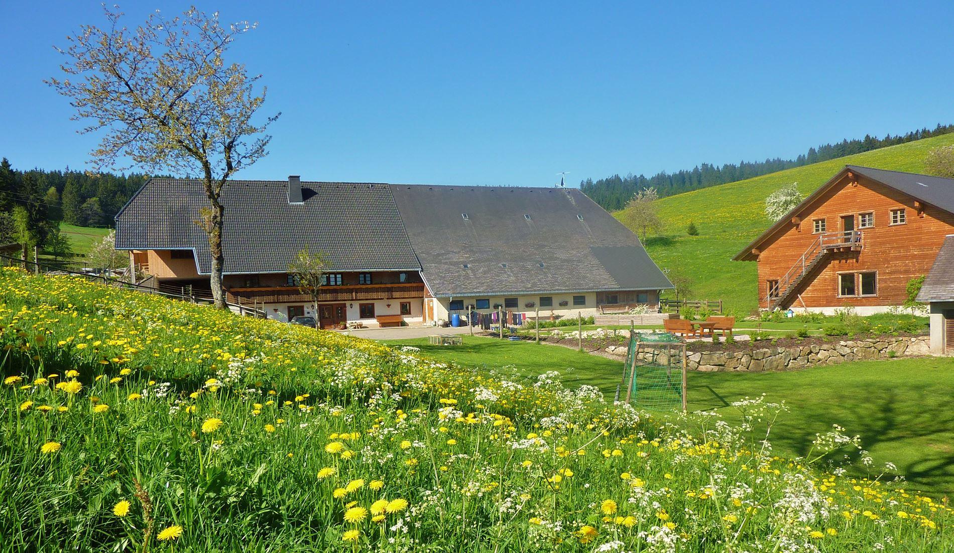 Lippenhof im Schwarzwald Ferienwohnung
