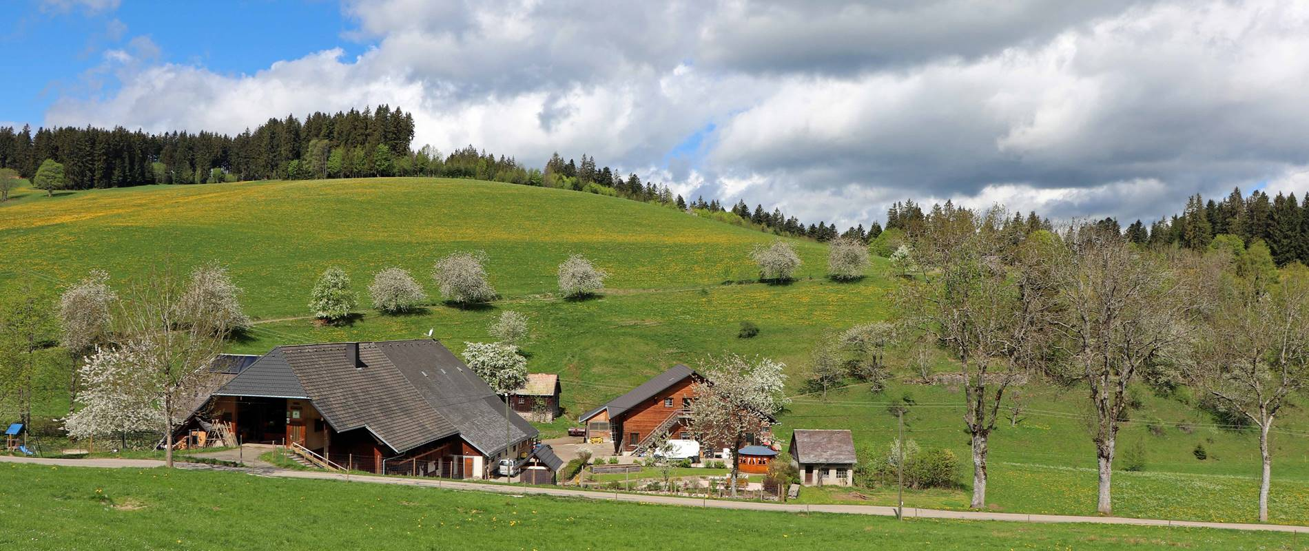 Lippenhof Biohof im Hochschwarzwald