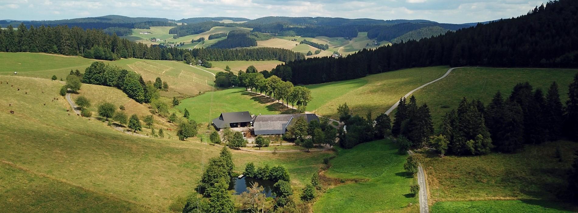 lippenhof-schwarzwald-drohnenbild