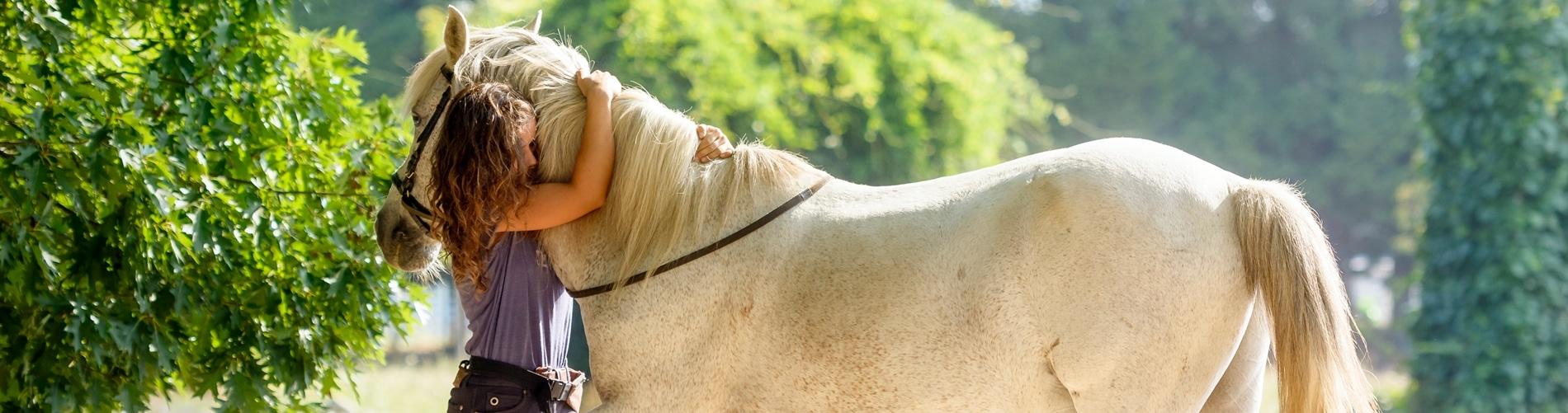 Pferd wird von Frau umamt